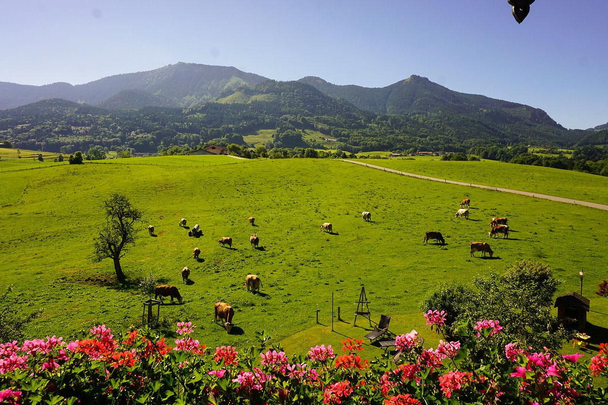 Genießen Sie einen atemberaubenden Ausblick auf unser Samerberger Naturparadies